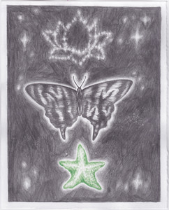 butterfly with green starfish and lotus constellation