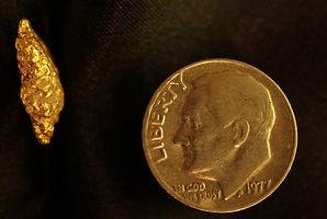 Medium Gold Nugget gnm134
