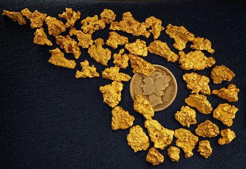 Investment Gold at goldnuggetman.com