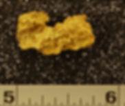 Medium Gold Nugget gnm122