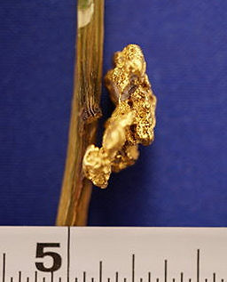 Natural Gold Nugget gnm198