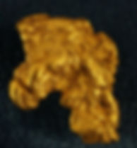 Large Gold Nugget gnm102