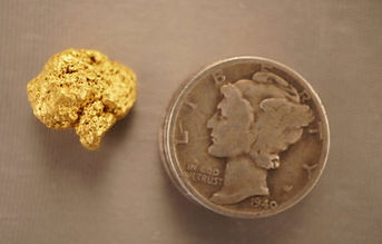 Natural Gold Nugget gnm188