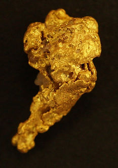 Medium Gold Nugget Neanderthal Battle Club gnm156