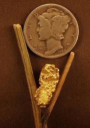 Medium Gold Nugget gnm115