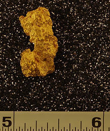 Medium Gold Nugget gnm122