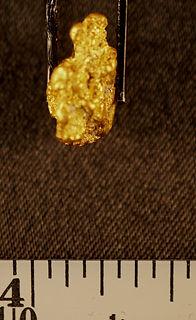 Medium Gold Nugget gnm140