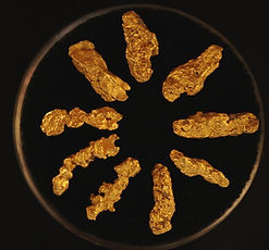 Genuine Gold Nuggets gnmcol120