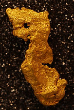 Large Gold Nugget gnm223