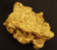 Large Gold Nugget gnm104
