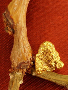 Small Gold Nugget gnm167