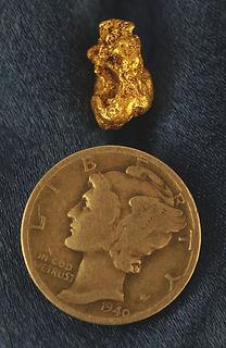 Genuine Nevada Gold gnm155