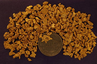Ounce of Gold gnmcol502