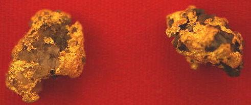 Genuine Gold and Quartz Specimens gnmda514