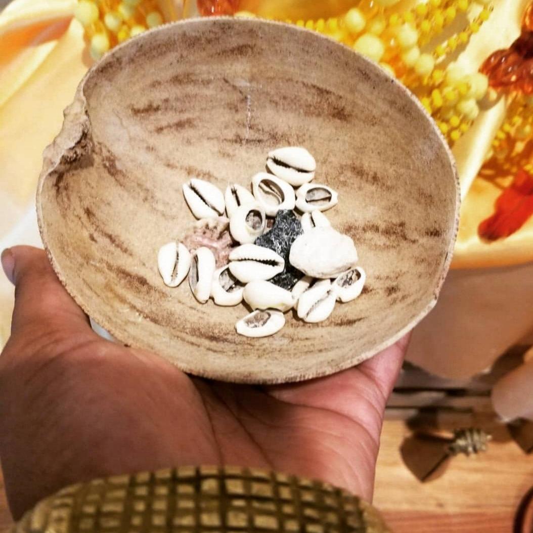 Orisha Cowrie Shell Divination