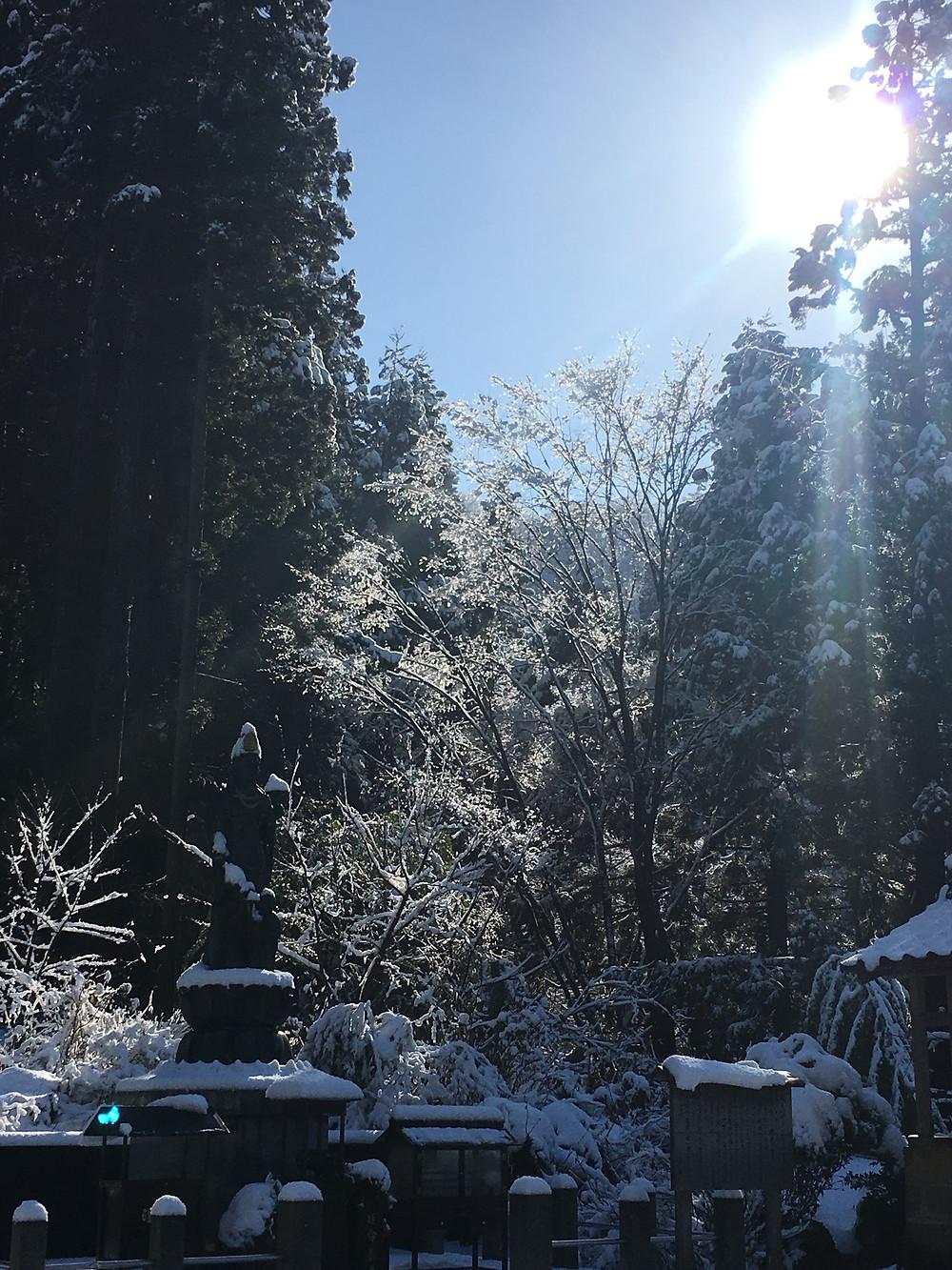 雪景色の中の白寿観音様