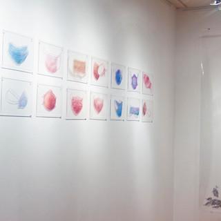 Visible Illusion, Solo Exhibition, Ashok Jain Gallery, New York