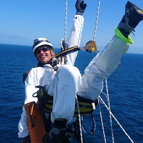 Climbing on the Job