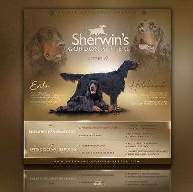 Sherwin's Q Wurf
