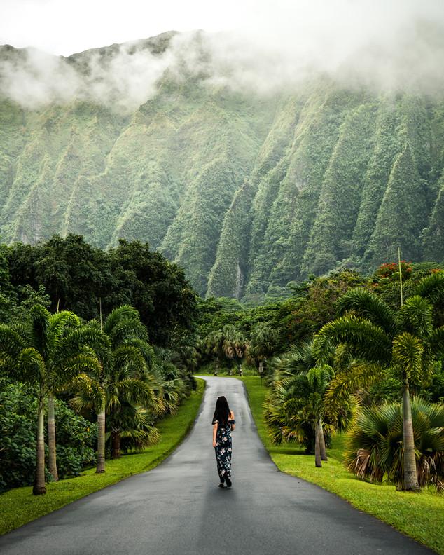 Ho'omaluhia Botanical Garden, Honolulu