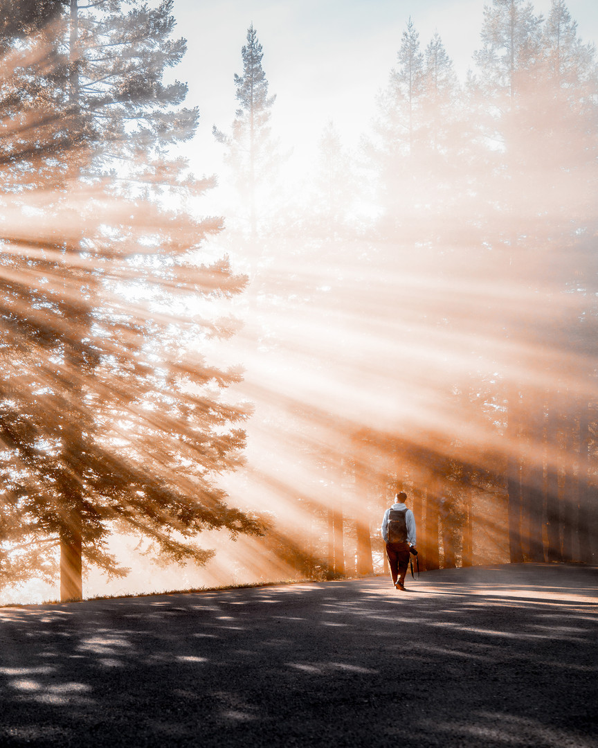 Mount Tamalpais, California