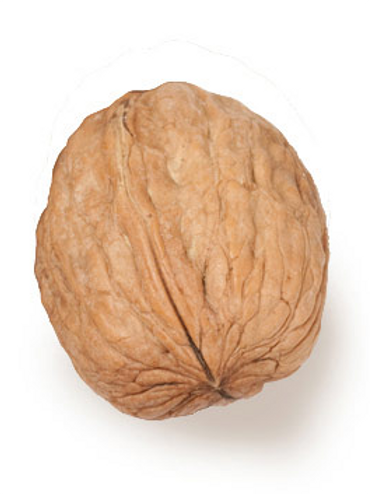 Walnuts In-Shell Imported - 1KG (Chilka Akhrot)