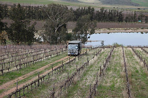 Vineyard Safari Wine Valley Safari