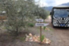 Owl's Rest Lavender Farm