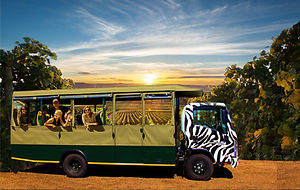 Sunset Safari with Ppl 2.jpg