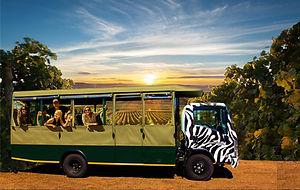 Sunset Safari with Ppl 2.jpg
