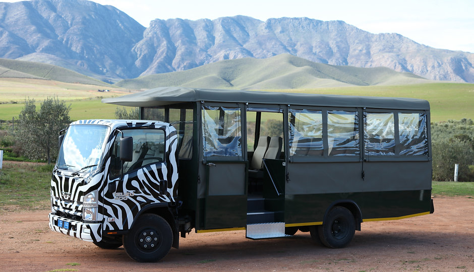 Open-Air Safari Vehicle
