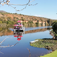 Viljoensdrift Wines Breede River Cruise