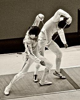 photos of fencing.jfif