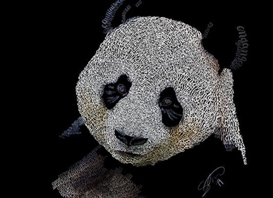 Panda Giclée Canvas 30x40