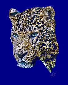 Amur_Leopard-.jpg