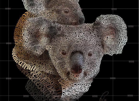 Koala Giclée Canvas 16x20