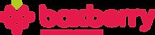 Boxberry_Logo_horizontally.png