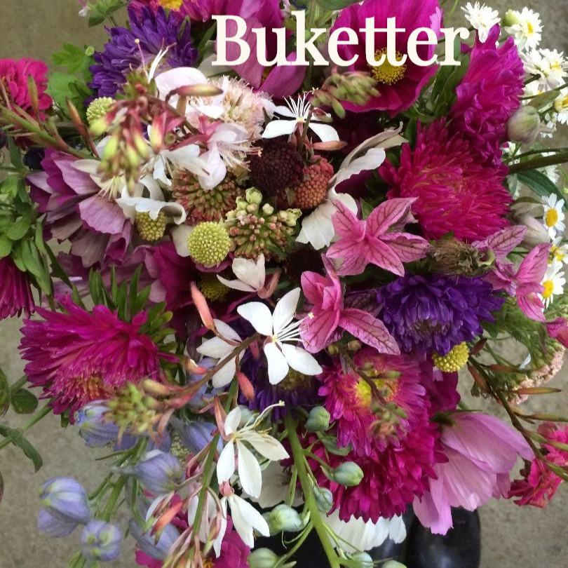 LOW RES Bouquet_edited.jpg