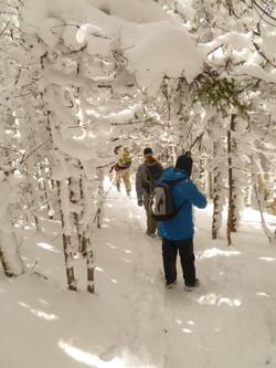 Mt Webster winter hike