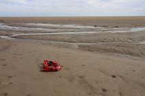 Scarf on Sand (450w).jpg