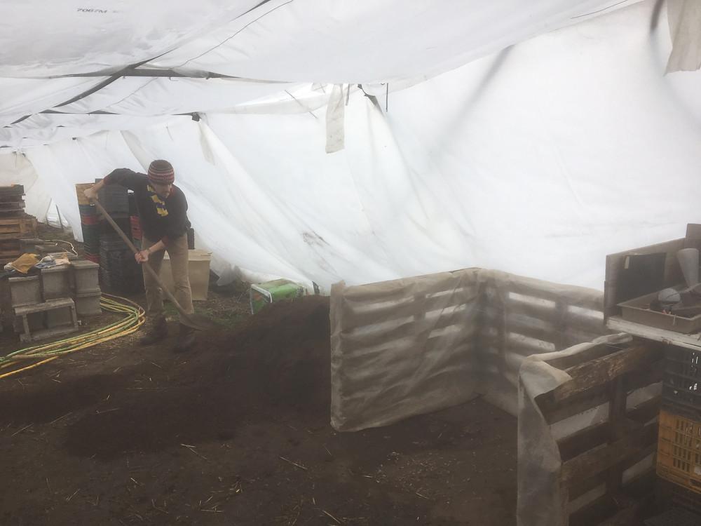 A saját komposztkeverékünk / Our own seed compost