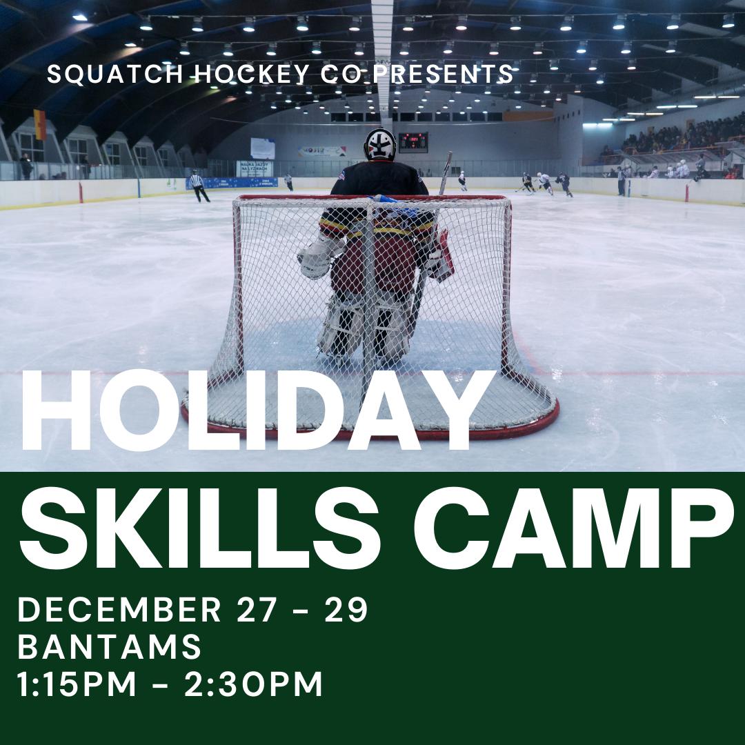 Holiday Skills Training