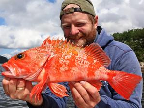 Havfisker'n - Vinnere av bildekonkurranse juni