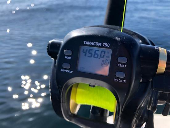 Testet: Daiwa Tanacom 750