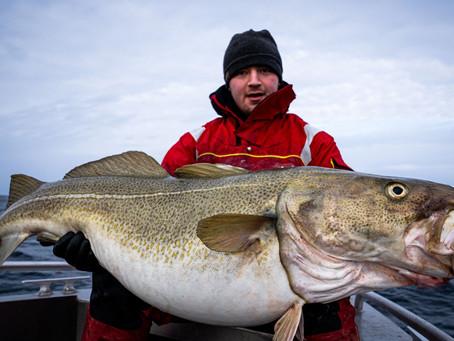 Havfisker'n - Bilal og Endre med storfisker!
