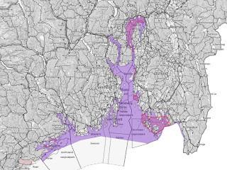 Vern av kysttorsken i sør innføres 15. juni