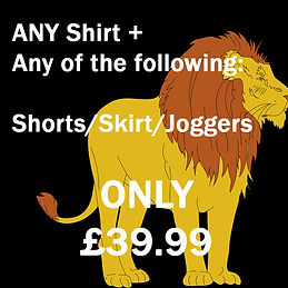 Junior lion.jpg