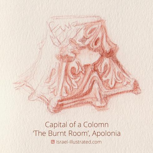 Pillar Capital, Apolonia