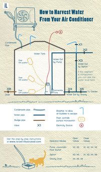 infographic instructions