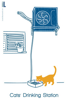 cats drinking station